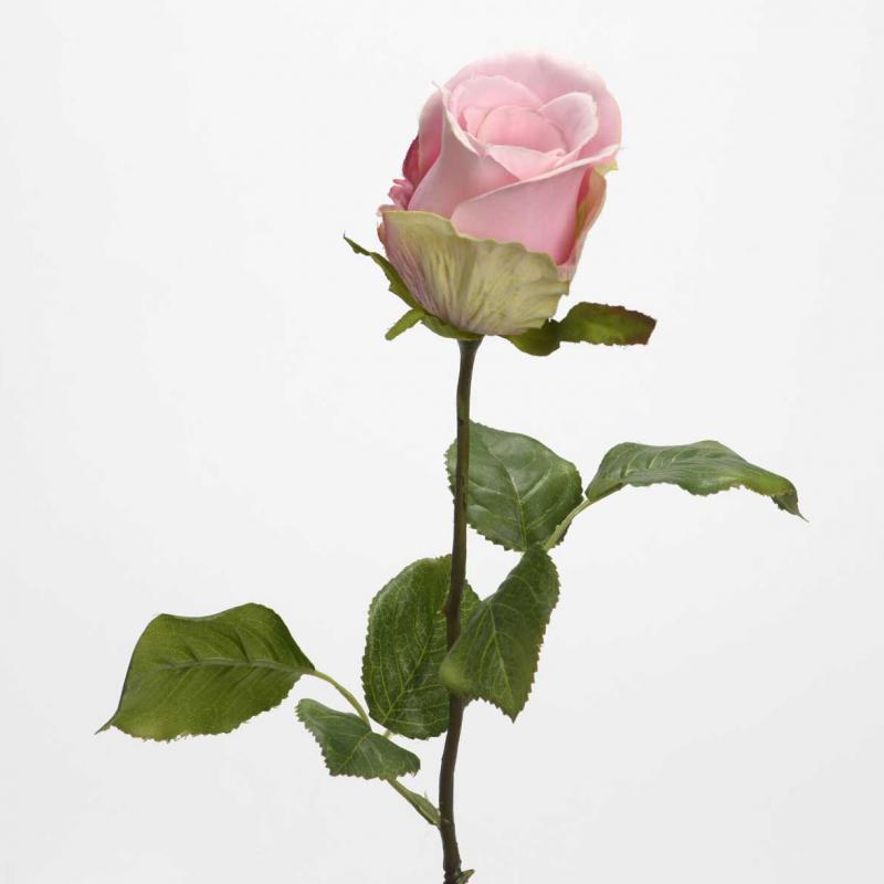 Rose Bouton Ballerine