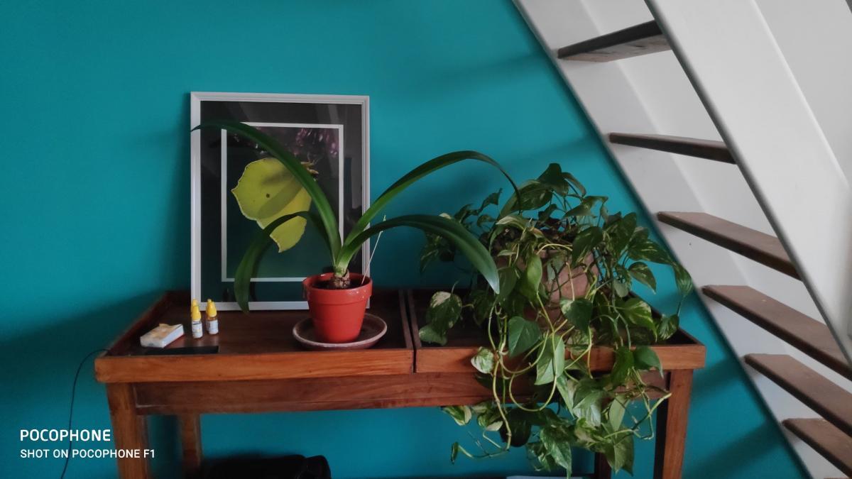 Le turquoise teinte thérapeutique<br>