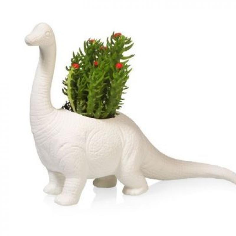 Plantasaurus BRACHIOSAURUS